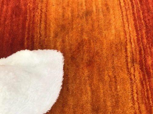 ハグみじゅうたんのお手入れ タオルで水拭き
