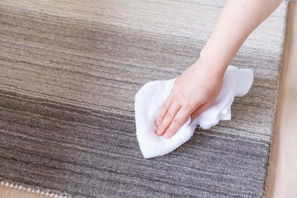 ハグみじゅうたんを水拭きしている様子